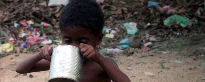 Głodni Madagaskaru - spotkanie z Danielem Kasprowiczem